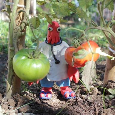 zoidberg_tomate
